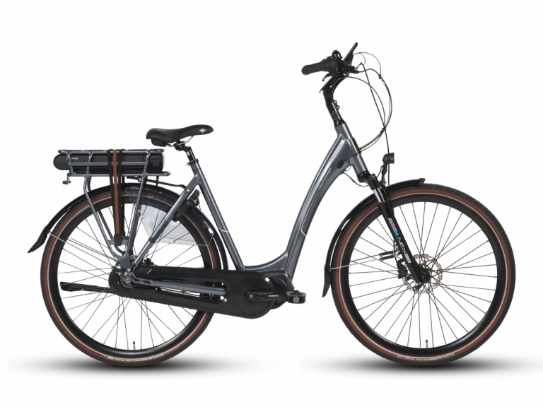 BSP E-Bike (1)